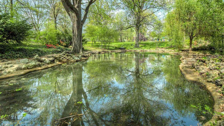image d'un étang