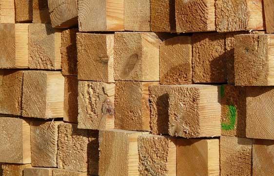 des planches de bois pour faire la fondation d'une serre de jardin en bois