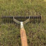 Un scarificateur manuel pour scarifier sa pelouse
