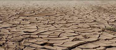 Un sol argileux totalement desséché (La dessiccation des sols)