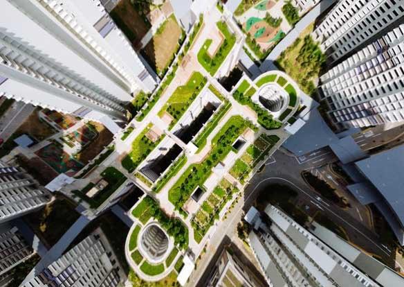 Image d'un toit végétalisé en ville