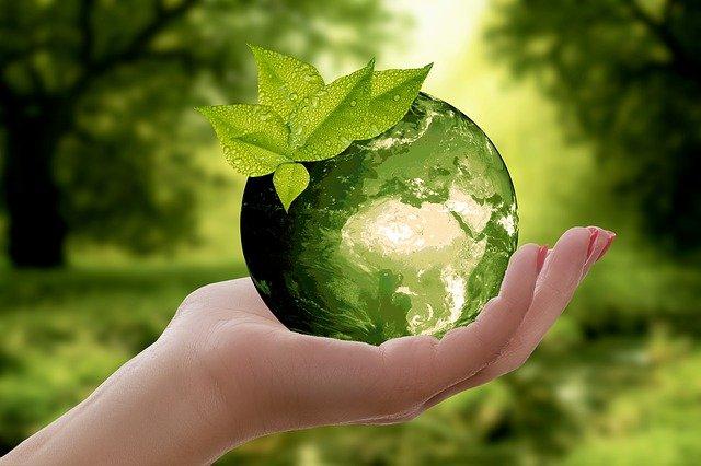 Que signifie éco-responsable et comment l'être ?
